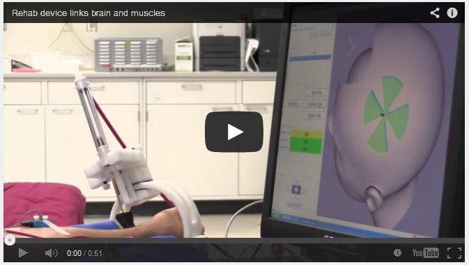 GT brain muscle link video