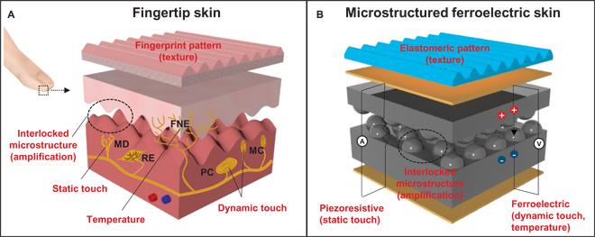 Artificial Skin Senses Touch Health Tech Insider