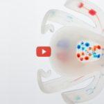 Octobot Autonomous Robot Is Soft [video]