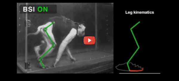 brain-spine-implant-walking-monkey-with-video-600x272