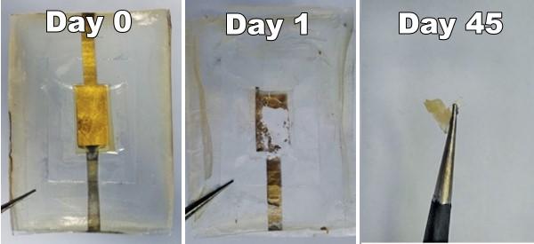 Silk battery
