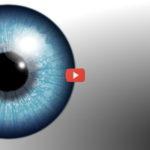 Deep Learning Diagnosis Diabetic Eye Disease [video]