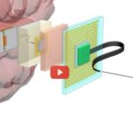 Massively Parallel Interface Reconnects Brain [video]