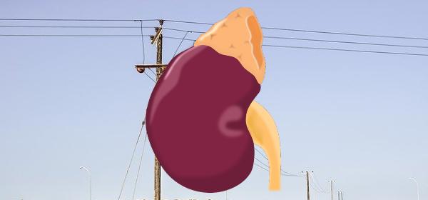 Telemedicine for Kidney Transplant Patients