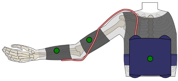 Wearable Robot Assists Upper Body Movements
