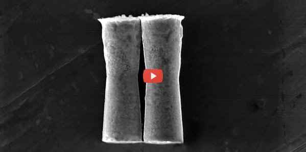 Acid-Powered Rockets Explore the Stomach [video]