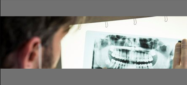 Synthetic Biomedical Dental Fillings Prompt Cell Growth
