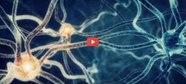 Bioelectronics to Control Nervous System Signals [video]