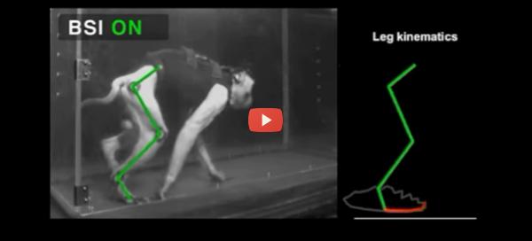 Brain-Spine Implants Let Monkey Walk Again [video]