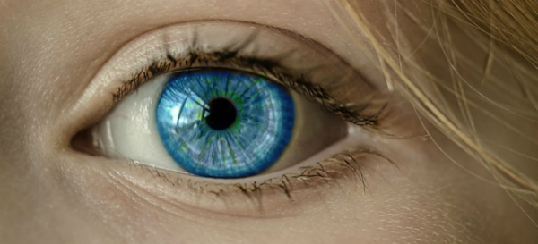 Synthetic Soft Tissue For Retinal Implants