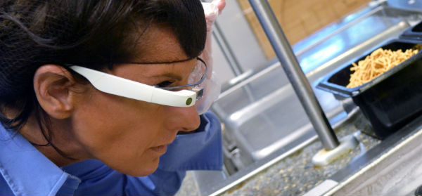 Google Glass Application for Food Inspection